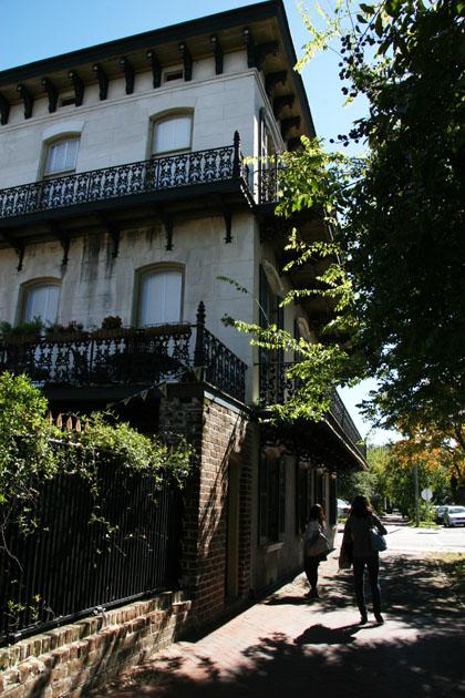 Savannah3.jpg