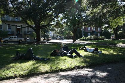 Savannah6.jpg