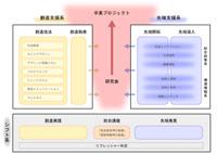 SFCcurriculum