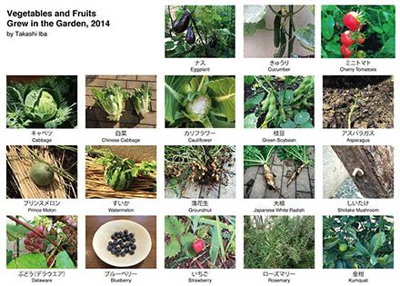 Garden2014.jpg