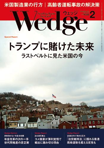 Wedge2017Feb.jpg